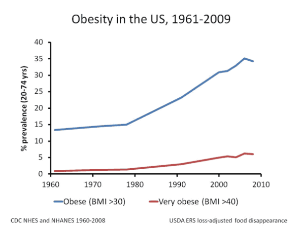 Fun Facts About Obesity Jayman S Blog