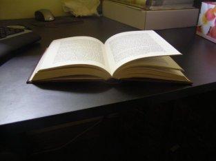 Open_book_2_by_sbmdestock