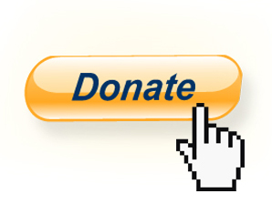 donate_paypal