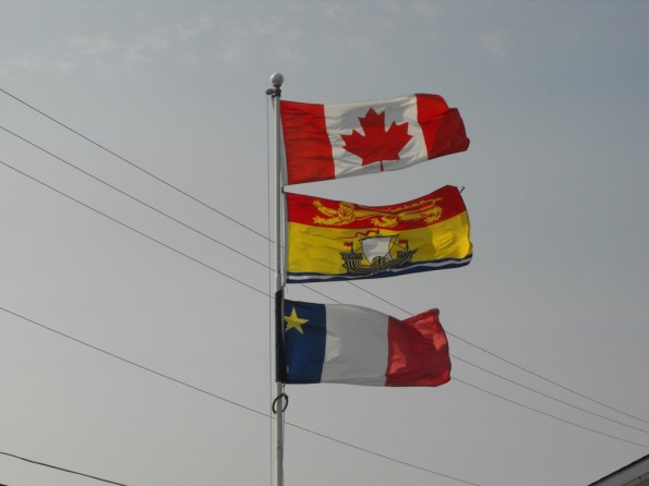 Flags (Copy)