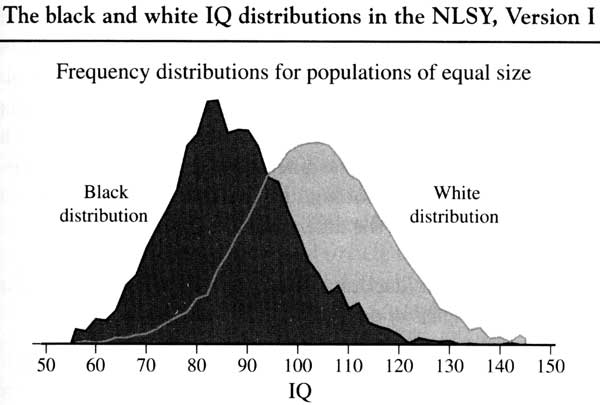 [Image: 20060122_multiracialists_are_crazy_part_...racial.jpg]